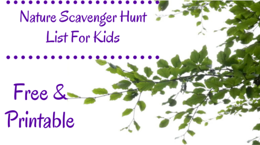 Nature Scavenger Hunt List For Kids