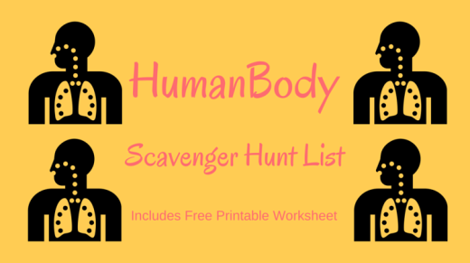 Human Body Scavenger Hunt List
