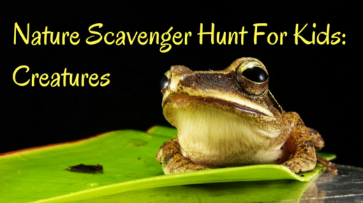 Nature Scavenger Hunt For Kids Creatures