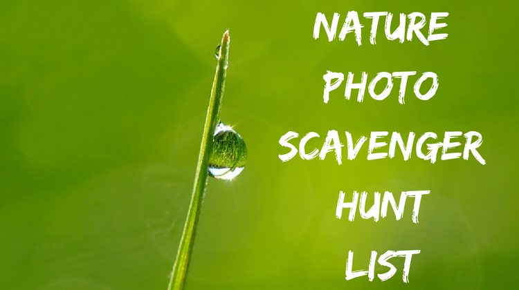 Nature Photo Scavenger Hunt List